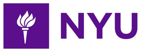New York Unversity_math academy